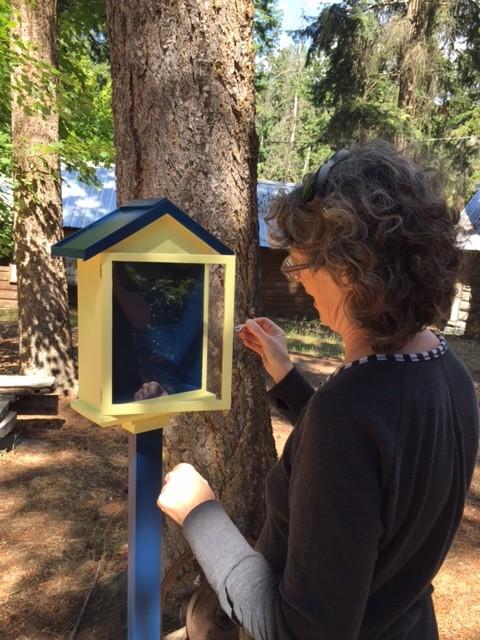 Pollinator Pasture Poetry Boxes.